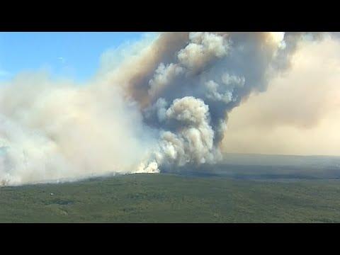Südlich von Sydney: Royal National Park in Flammen