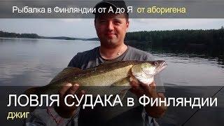 Ловля судака на джиг в Финляндии или как ловить судака. Рыбалка в Финляндии