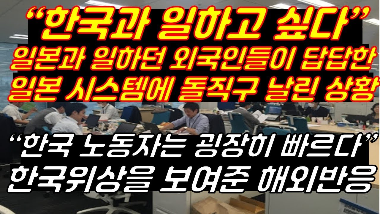"""""""한국과 일하고 싶다"""" 일본과 일하던 외국인들이 답답한 일본 시스템에 돌직구 날린 상황 """"한국 노동자는 굉장히 빠르다"""" 한국위상을 보여준 해외반응"""