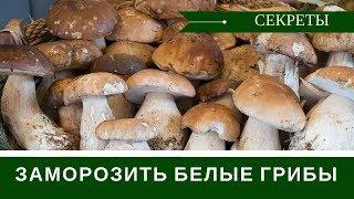 видео Правильная обработка грибов