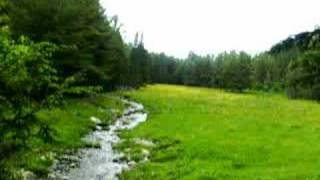 Springtime Stream in Vermont