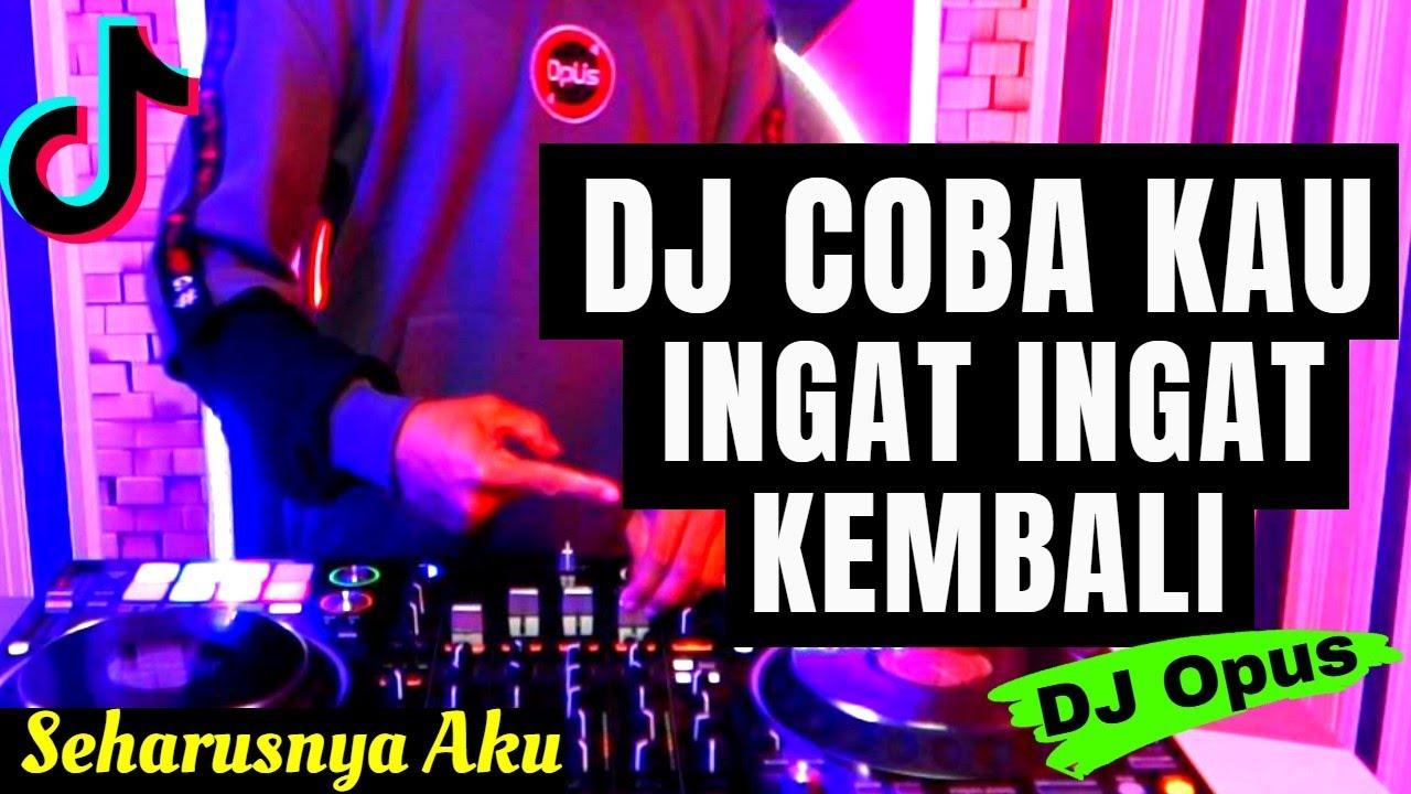 DJ COBA KAU INGAT INGAT KEMBALI TIK TOK VIRAL 2020 | DJ SEHARUSNYA AKU REMIX (MAULANA WIJAYA)
