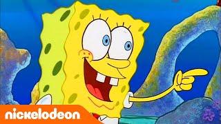 Губка Боб Квадратные Штаны | Встреча с белкой | Nickelodeon Россия