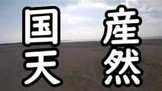 茨城県庁ホームページ 「鹿島灘での潮干狩りの新しいルール」 https://w...