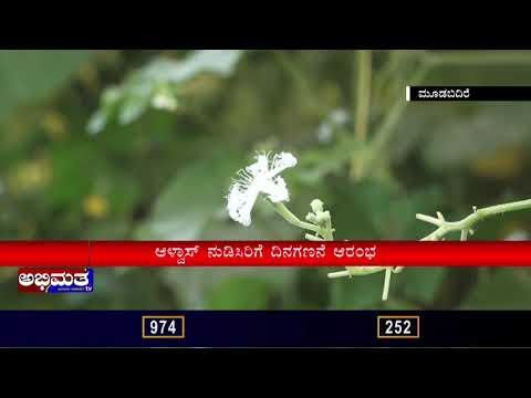 ಆಳ್ವಾಸ್ ನುಡಿಸಿರಿಗೆ ಕ್ಷಣಗಣನೆ..ಪುಷ್ಪಸಿರಿಯ ಉದ್ಘಾಟನೆ ...ಅಭಿಮತ ನ್ಯೂಸ್