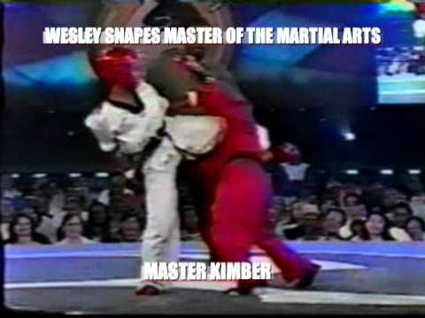 WESLEY SNIPES MASTER OF THE MARTIAL ARTS