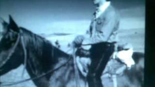 Peter Hinnen - Mein Pferd Tonky