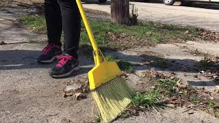 Lawmakers and organizations work together to clean Saginaw for Earth Day