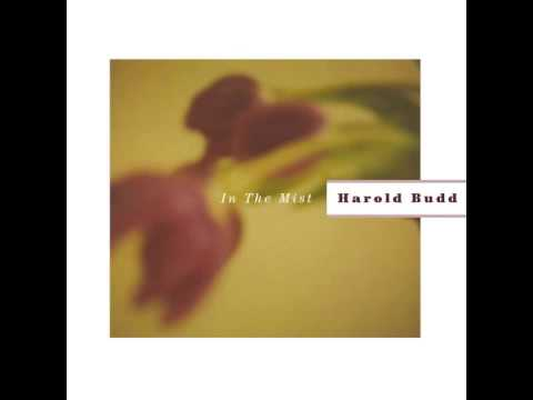 harold budd the panther of small favors