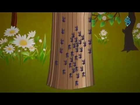 Kanuni Sultan Süleyman - Ağaçları Karıncaların Sarması (Zembilli Ali Efendi)