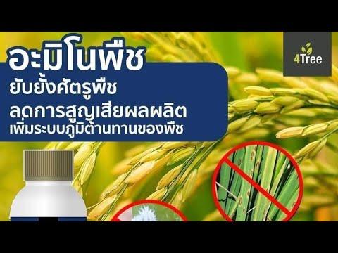 ไบโอบลู กำจัดหนอน แมลง แบบปลอดสารเคมี สนใจโทร 063-5164500