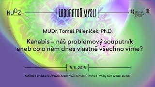 Tomáš Páleníček - Kanabis (ÚMKP, NUDZ 8.11.2018)