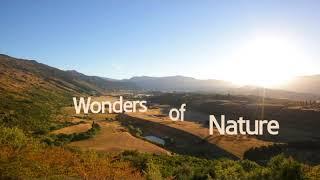 насколько прекрасная наша планета
