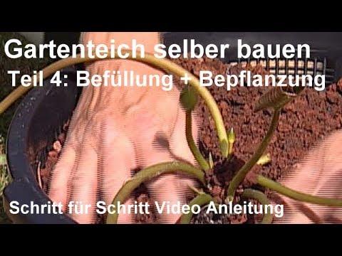 Gartenteich Selber Bauen Teil 4 Befullung Und Bepflanzung