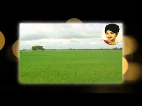 Ros sereysothea | Thoek Pnek Daney | Khmer Old Song | Cambodia Music MP3  2015 music mp3