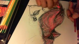 2014 04 25 STUART BEVERLY HEALTH HERB DRAWING SKETCHING A CARDINAL