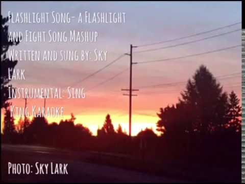 Flashlight Song- A Flashlight and Fight Song Mashup