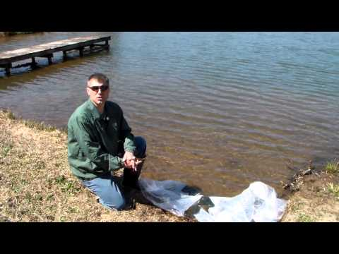 Stocking A Pond With Shellcracker Bluegills And Channel Catfish