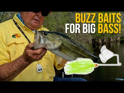 Buzz Baits For Big Bass!