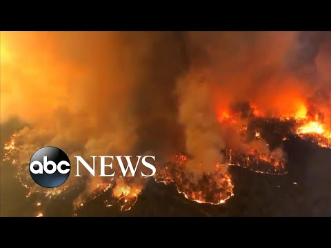 3 Americans killed in water tanker crash fighting Australia fires l ABC News