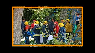 Falling tree kills 13 at portugal festival