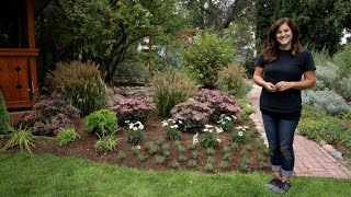 Time to Plant Perennials and Shrubs To Enjoy Next Year