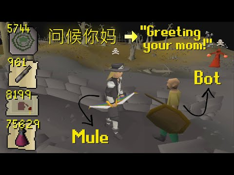 I Stole Millions of GP From His Bot Farm Mule, So He Cursed Me in Chinese