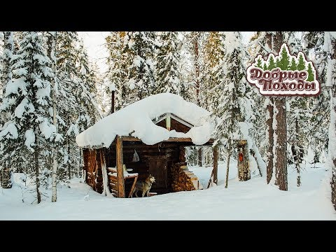 Hike in the taiga to a log cabin. North of Russia.