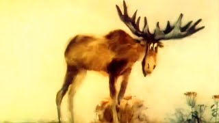 Добро пожаловать! Мультфильм про безотказного и вежливого лося.