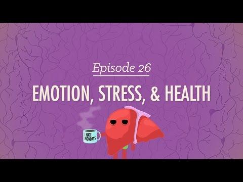 Emotion, Stress, and Health: Crash Course Psychology #26