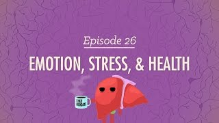 Emotion, Stress, and Health: Crash Course Psychology #26