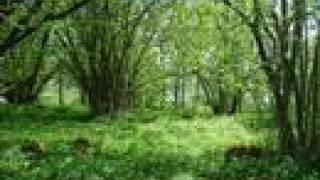 Visa vid vindens ängar - Mats Paulson thumbnail