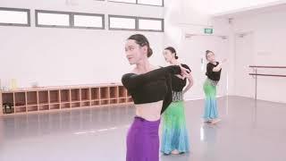 成品 Chinese Dance Repertoire for Adult