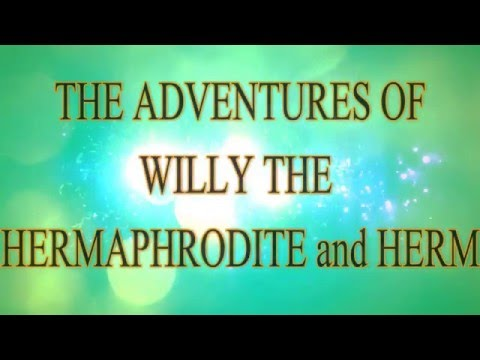 Willy the Hermaphrodite Introduction