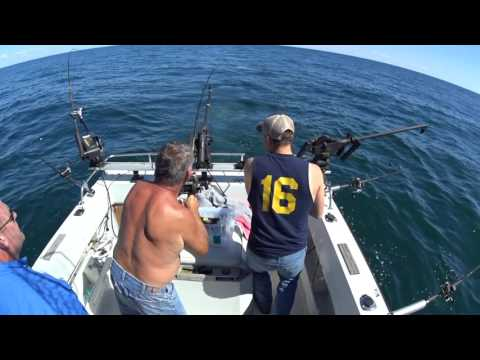Salmon Fishing 2016