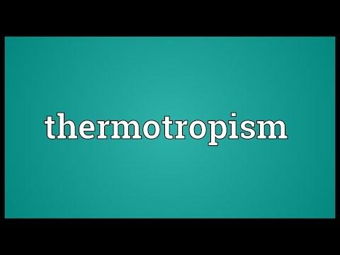 Header of thermotropism