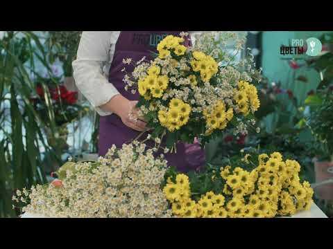 Букет из хризантемы и ромашек 51шт