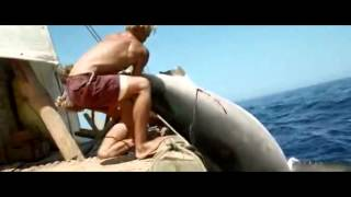 Melhor maneira de pescar um GRANDE TUBARÃO BRANCO!!!