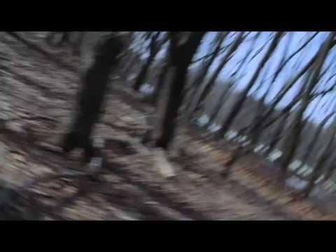 Dreams - A Short Film By Ilay Ron (TV)