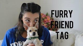 FURRY FRIEND TAG l TAG DEL CHIHUAHUA♥ l Sofia Castro
