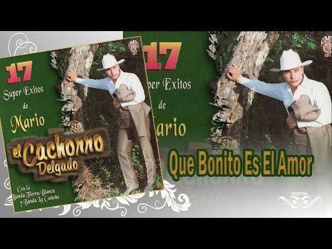 Que Bonito Es El Amor - El Cachorro - 17 Super Exitos De Mario - Disco Oficial
