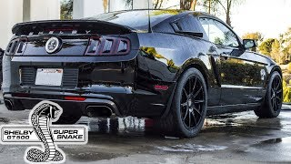 Why I Bought The 1000HP Shelby GT500 Super Snake ! thumbnail