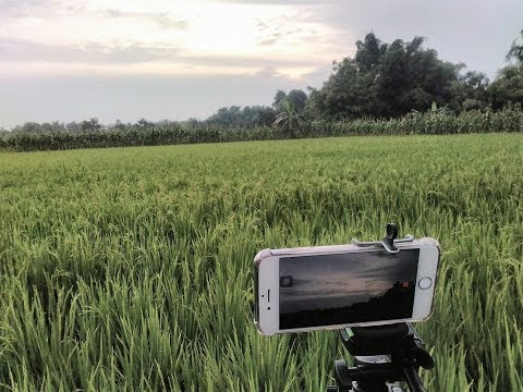 trailer-kkn-uisi-2018-desa-puter-kec-kembangbahu,-kab-lamongan