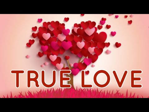 WHAT IS YOUR TRUE LOVES NAME? {GIRL NAMES}