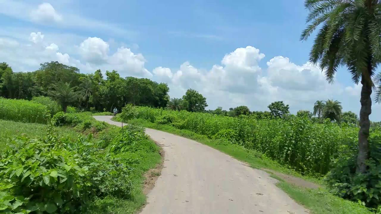 beautiful scenery of west bengal. - youtube