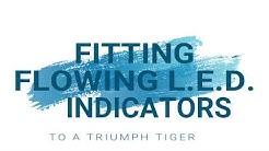 Blinker Triumph Tiger 1050