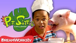 Cooking for a Picky Pig | PET SITTER CHALLENGE