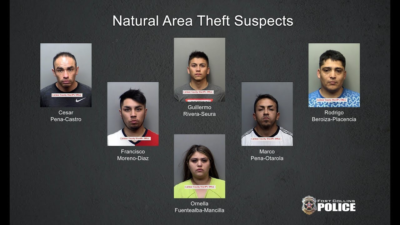 Eight suspects apprehended in two series of credit card thefts - The