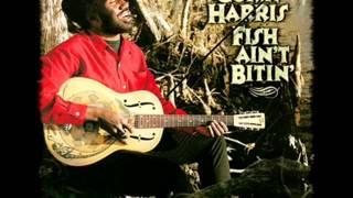 Corey Harris - Preaching Blues