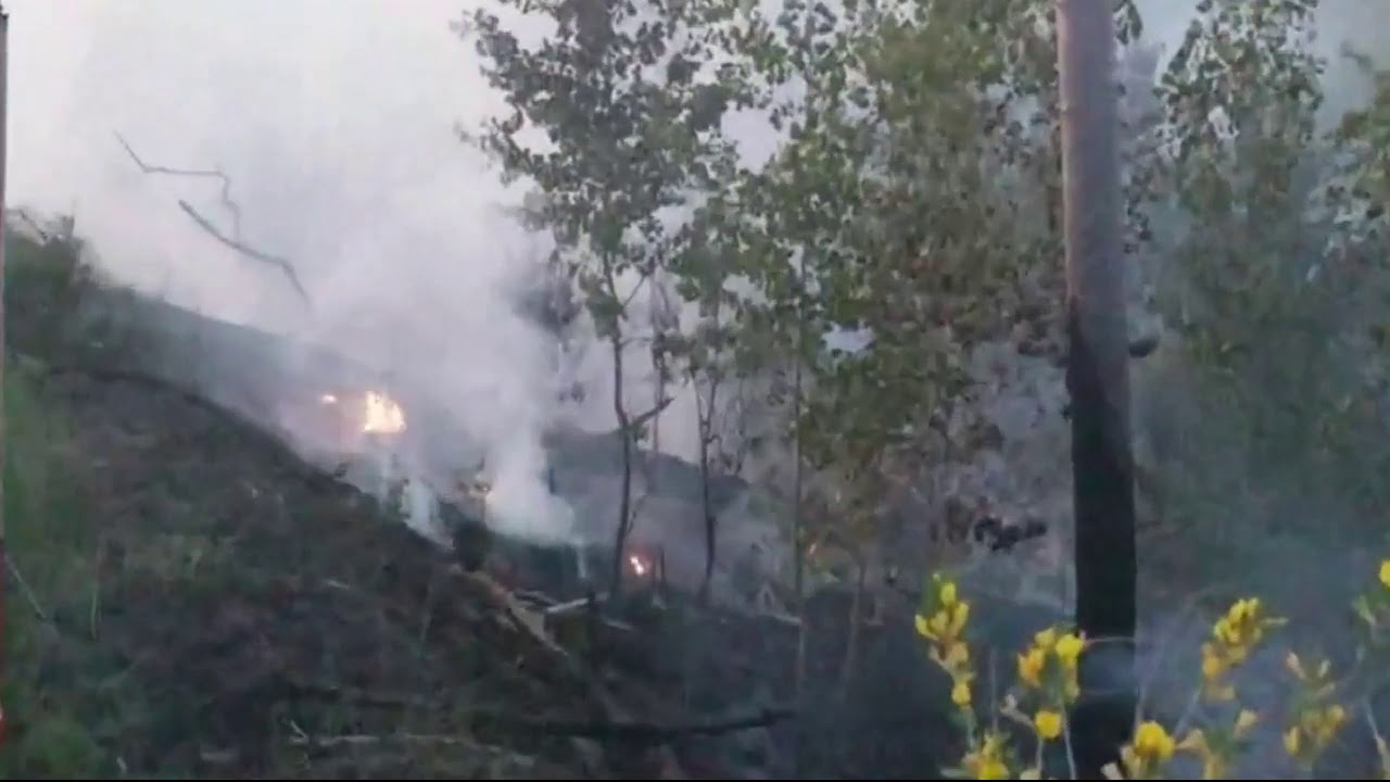 В Тольятти засняли поджигателя леса